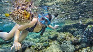 outbound pantai jogja snorkeling