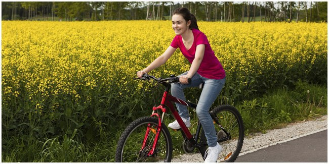 wisata sepeda borobudur