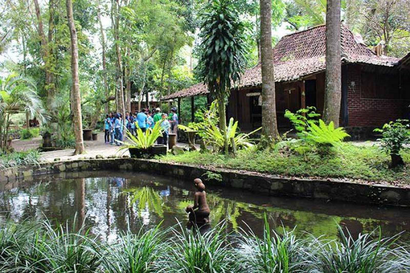 Live in di desa wisata Jogja