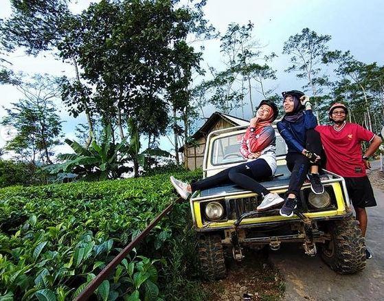 Offroad Jeep Nglinggo